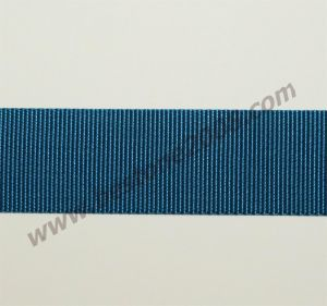 High Quality Nylon Webbing for Bag and Garment#1501-02c pictures & photos