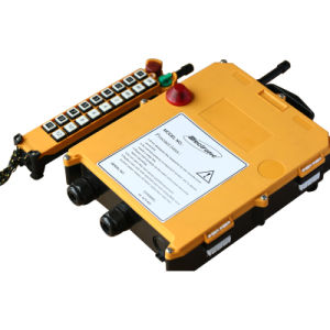 Portable Industrial Radio Remote Control for Crane F21-20s pictures & photos