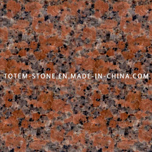 Cheap Polished G562 Maple Red Stone Granite Kitchen Tile Flooring pictures & photos