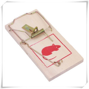 Practical Wooden Mouse Trap for Pest Control (V14007) pictures & photos