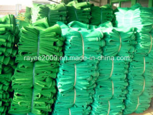 Safety Net/ Debris Netting/ Scaffolding Netting /Protection Net /Construction Net /Construction Safety Net pictures & photos