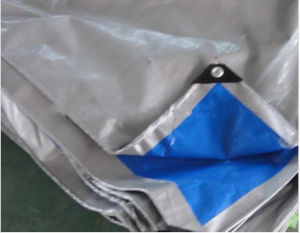 Blue/Silver Plastic Tarpaulin Cover pictures & photos