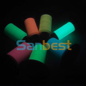 100% Colorful Polyester Glow in The Dark Embroidery Thread pictures & photos