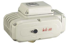 Electric Valve Actuator Hl-100 pictures & photos
