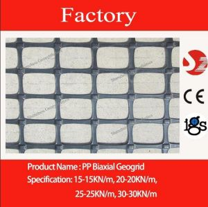 PP Biaxial Geogrid 20/20 (BX1100) for Reinfocement
