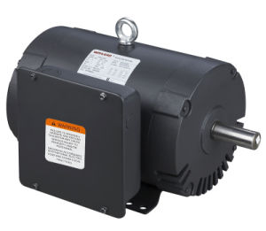 Odp Single-Phase Air Compressor NEMA Motor pictures & photos
