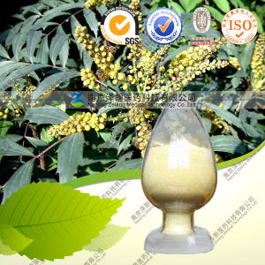High Quality 100% Natural Chinese Goldthread Extract--Berberine pictures & photos