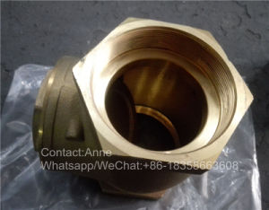 1/2 Inch-4 Inch Brass Horizontal Check Valve (YD-3009) pictures & photos