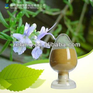 Natural Rosmarinic Acid Rosemary Extract pictures & photos