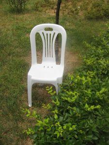 Bristo Plastic Wedding Chair pictures & photos