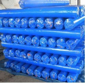 Blue PE Tarpaulin in Rolls or Sheets