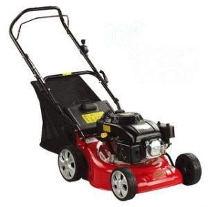 Tw-Lm02 1inch 4.5HP Lawn Mower pictures & photos