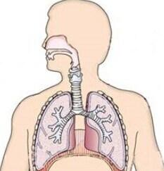 (Ceftezole Sodium) --Respiratory Infection Ceftezole Sodium pictures & photos
