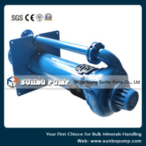 Vertical Centrifugal Sludge Pump/Submersible Slurry Pump pictures & photos