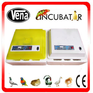 Best Selling Automatic Industrial Chicken Incubator for Hatching Chicken Eggs for Sale CE Approved with Factory Price pictures & photos