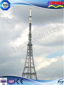 Telecom Steel Tower (Communication Tower) (FLM-ST-030) pictures & photos