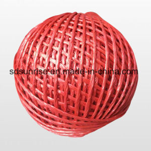 PE Packing Twine Baler Twine Packaging Rope pictures & photos