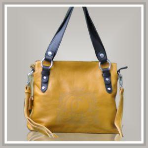 Fashion Ladies′ Handbag (20694)