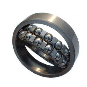 Self-Aligning Ball Bearing NSK1206 Auto Parts Bearing pictures & photos
