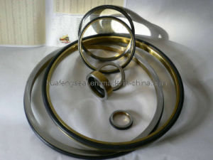 Seal Ring in Excavator pictures & photos