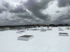 Building Material PVC Waterproof Membrane for Sing-Ply Roofing System pictures & photos