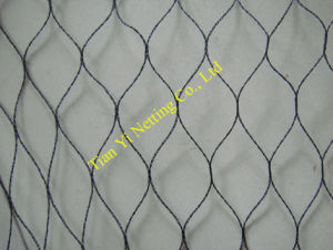 UV Protection Anti-Bird Net - 2 (BN010) pictures & photos