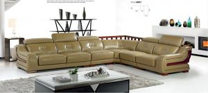 China Top Grain Living Room Leather Sofa pictures & photos