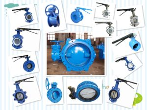 Wafer Lug Type Butterfly Valve, Gear Box Operator pictures & photos
