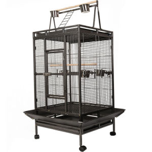 Best Large Bird Cage for Parrot with High Quality and Competitive Price pictures & photos