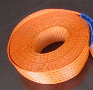 Sf 5: 1 2tx3m Eye Type Webbing Sling with Ce GS Certificate pictures & photos