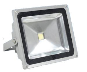 50W Flood Light (3 years warranty)