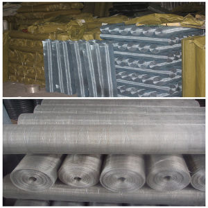 Common and Blue-White Color 14mesh and 18mesh Galvanized Mosquito Screen pictures & photos