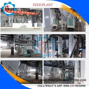 Pig Chicken Duck Rabbit Cattle Feed Pellet Production Line Plant pictures & photos