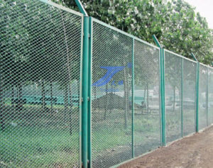 Expanded Wire Mesh Park Fence pictures & photos