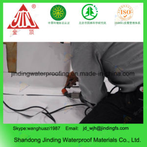 Homogeneous PVC Roofing Waterproof Membrane for Roof pictures & photos