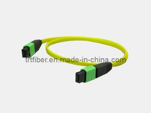 MPO Female to MPO Male 12 Fiber Cores Fiber Cable pictures & photos
