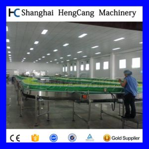 Chain Plan Conveyor pictures & photos