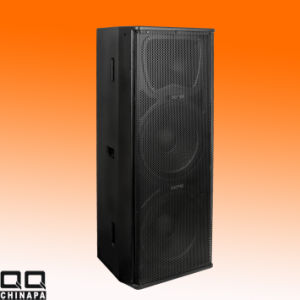 Two Way 15inch Professinal Stage Speaker (Dm252) pictures & photos