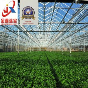 Vegetable Growing Intelligent Glass Greenhouse pictures & photos
