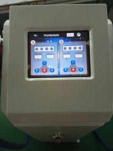 High Quality Zeltiq Cryolipolysis Cool Vibration Vacuum Machine H-2000 pictures & photos