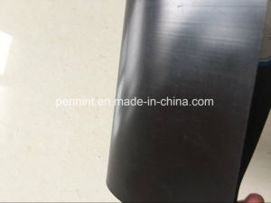 HDPE Geomembrane for Shrimp Farm pictures & photos