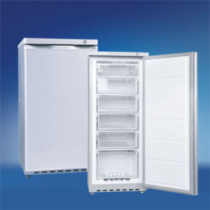 BD-122 Mini Upright Refrigerator Fridge