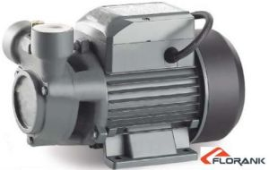 High Quality Vortex Pump with Ce (PQm 60, 70, 80) pictures & photos