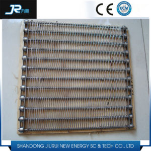 Conventional Weave Belt for Food Production Line pictures & photos
