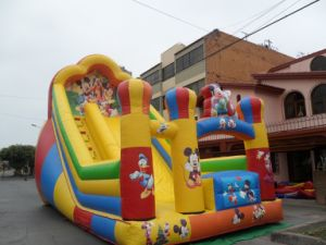 Mickey Inflatable Slide, Inflatable Sliding Slide, Toboggans Gonflables pictures & photos