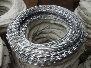 Hot Dipped Galvanized Metal Razor Blade Wire pictures & photos