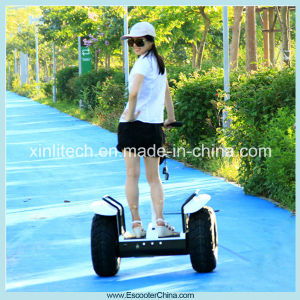 China Factory Stand up Electric Trike Scooter with 2 Wheels and CE/FCC/RoHS Approved pictures & photos