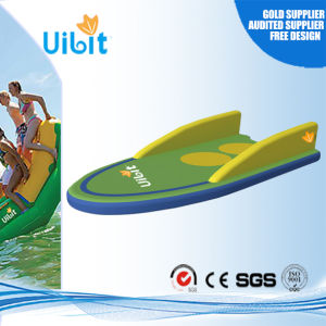 High Quality Inflatable Water Playground for Children Park (Sled) pictures & photos