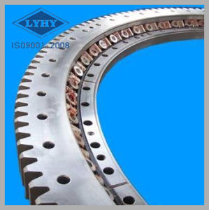 Large Diameter Slewing Bearing for Crane pictures & photos