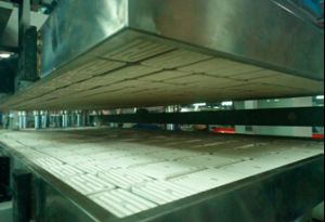 Full-Automatic Four Station Plastic Snack Box Thermoforming Machine pictures & photos